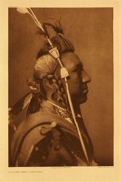 """Swallow Bird - Apsaroke."" Дата: 1908 год. Фото Edward S. Curtis. Valley Fine Art. Аспен, Колорадо."