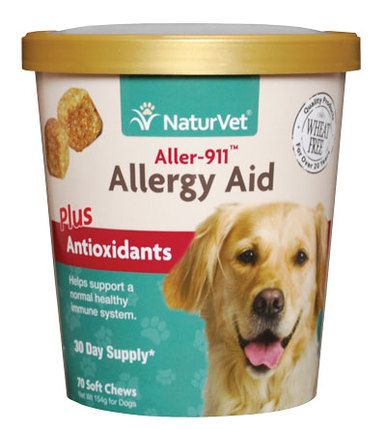 Ideas about dog allergy symptoms on pinterest types of dogs dog