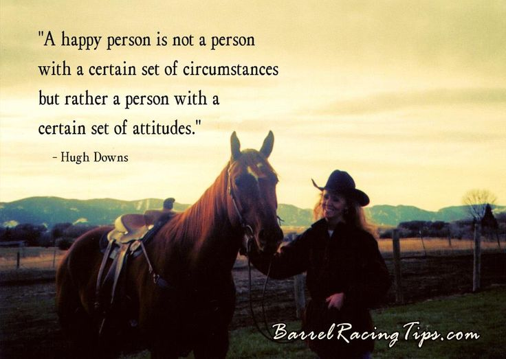 144 Best Horse Sayings Images On Pinterest