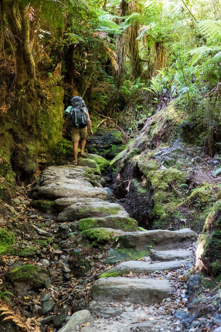 The Copland Track on New Zealand's South Island is an incredible overnight backpacking trek with dense forest, glacier rivers, alpine views, and HOT SPRINGS! See the pics and learn how to plan this must-do trek with this backpacking guide!