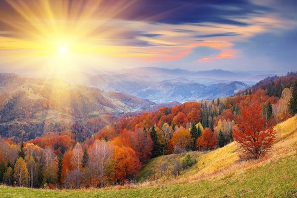 Wallpaper Rays Of Light Nature Autumn Sky Forests Scenery Seasons