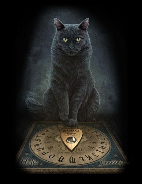 Black Cat Wall Plaque Art Print by Lisa Parker Master's Voice Ouija bo – Lasa Fine Jewelry and Luxury Gifts
