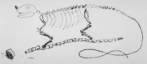 Mantell's Iguanodon hypothesis, with the horn on the nose (later discovered to be a thumb spike)