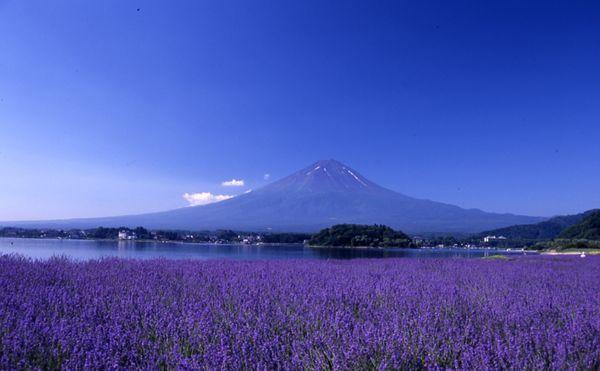 ユーラシア旅行社で行く富士山ツアー