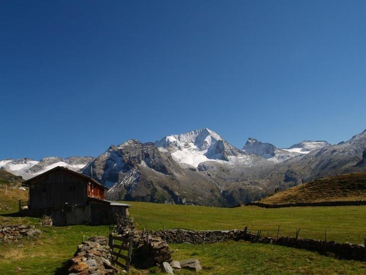 Kofleralm Rein in Taufers #Ahrntal #Suedtirol