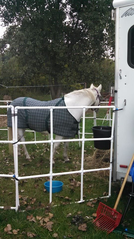 222 Best Images About Horse Trailer And Barn Ideas On