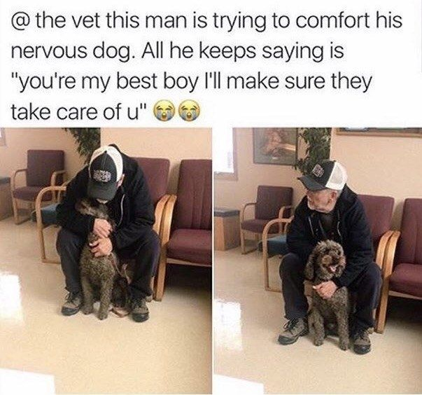This sweet, good boy AND his dog: