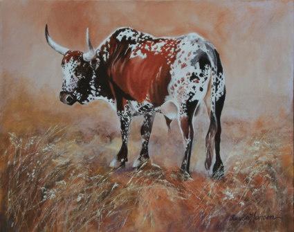 Iona's Nguni Cow (Bull)