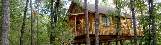 spend the night in a tree house - these look fabulous!