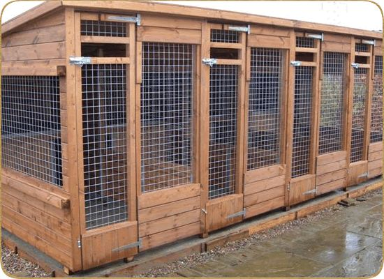 how to build an outdoor dog kennel and run
