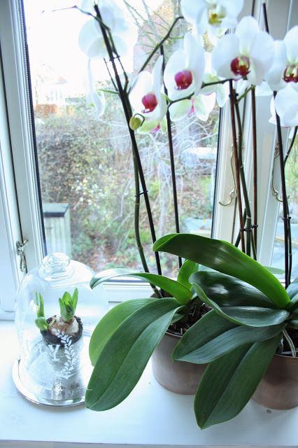 COOL WINTER @ http://oktoberkindblog.blogspot.dk/