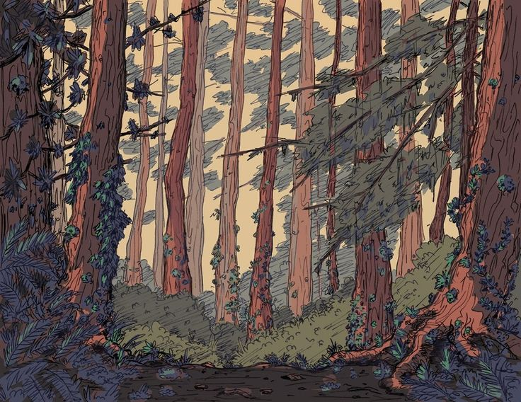 A forest background for a project I'm working on : drawing
