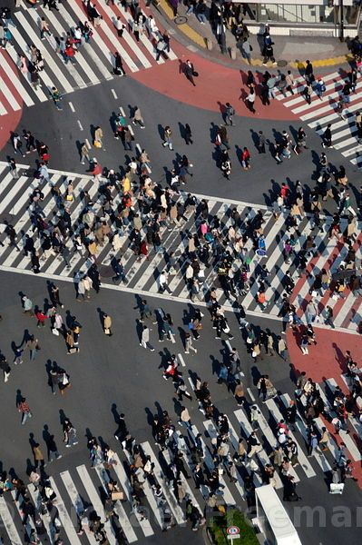 Shibuya crossing , one of the world's busiest, outside Shibya station , Tokyo Japan / Michael Freeman Photography
