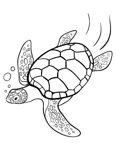 free turtle coloring pages | Printable turtle coloring page. Free PDF download at http ...