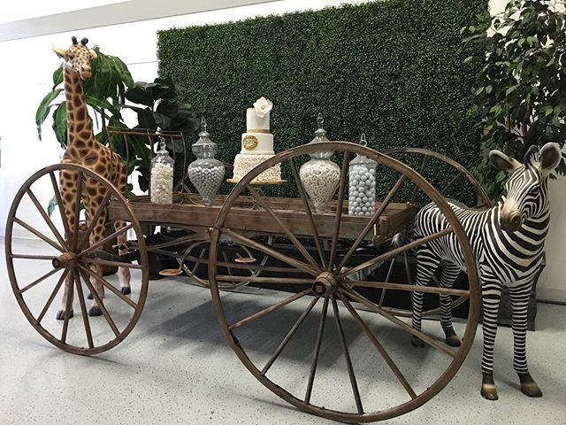 Elegant Safari Candy Table Cart: @platinumproprentals  Life Size Animals: @platinumproprentals