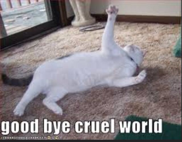 Goodbye Cruel World: Goodbye Email At Work