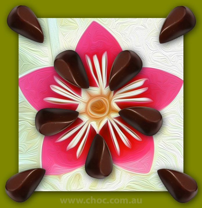 Chocolate Origami  Fardoulis Chocolates, Chocolate Plato  www.choc.com.au
