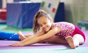Groupon - 4 Weeks of Gymnastics Classes for Kids at Michigan Academy of Gymnastics (Up to 50% Off) in Westland. Groupon deal price: $31