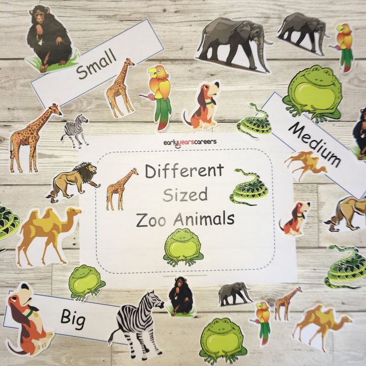 Early Years, EYFS , Ofsted, Development, Improvemment, Nursery, Childminder , Sized Zoo Animals