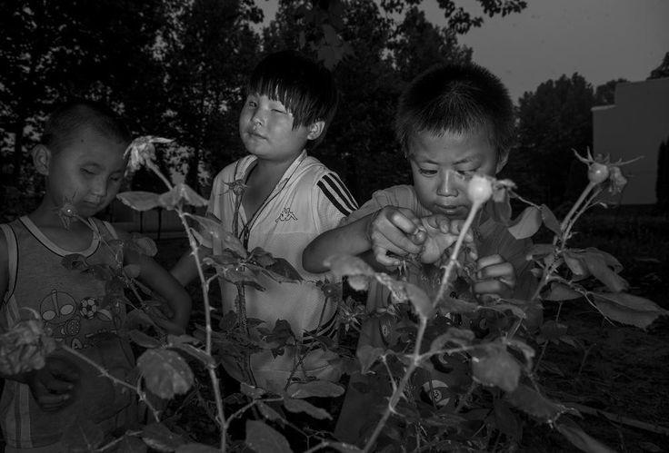Chińskie wioski ślepców