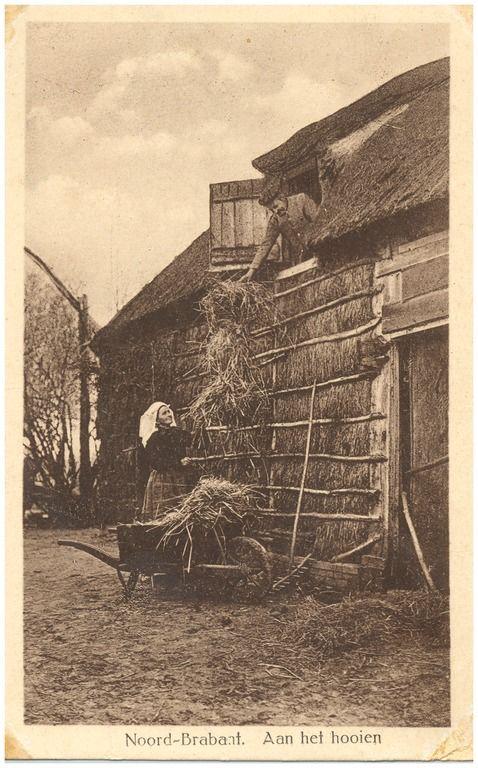 Het overbrengen van het hooi van de kruiwagen op de zolder of schelft, door een boer en boerin - 1900