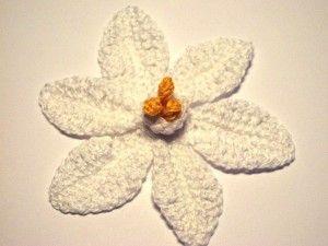 Jonquil Flower crochet pattern free