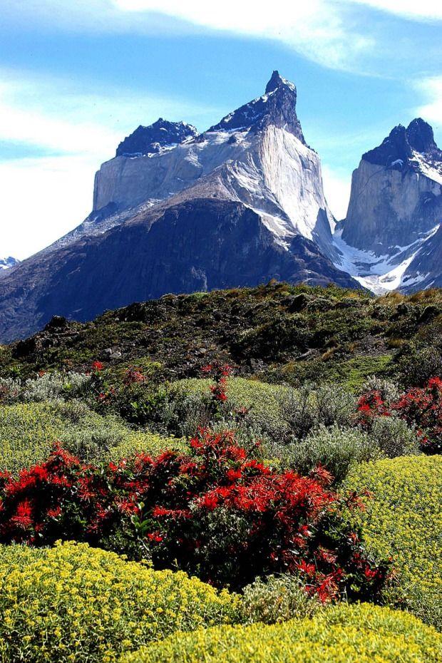 patagonia - photo #32