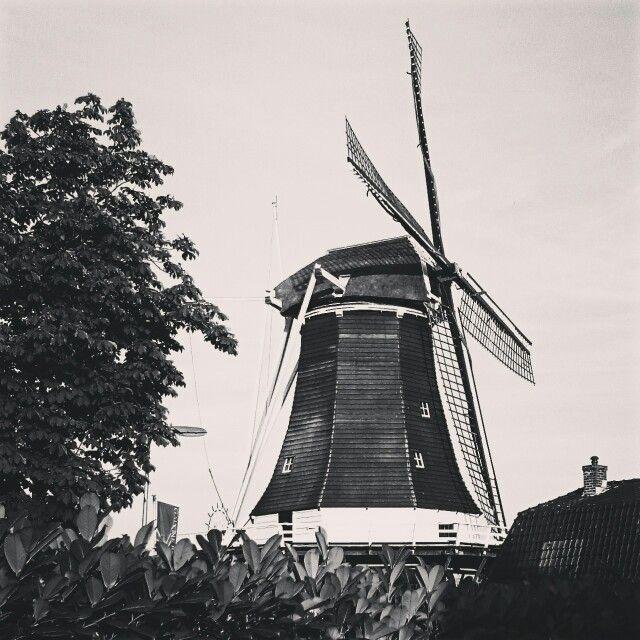 Mill in Wijhe holland (oude windmolen)