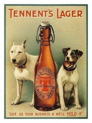 AP1511 - Tennents Lager, Vintage Beer Advert, 1909