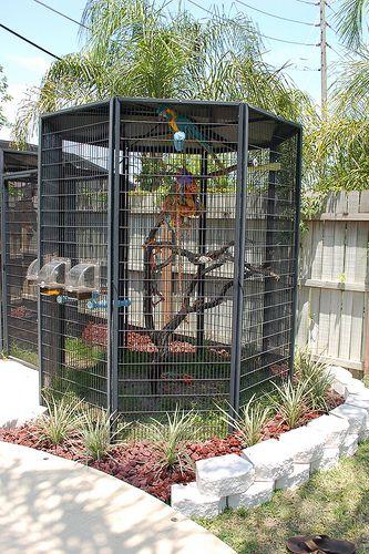 My aviary, someday . . . :)