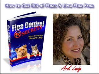 """Flea Control Secrets: How to Get Rid of Fleas & Live Flea Free! """"Do you want to learn the 'secrets' of how to get rid of fleas so you and your pets can live flea free? If you answered, """"Yes!"""" then read on because you're about to discover how to put an end to your flea control problems once and for all using proven techniques that give you long lasting results..."""