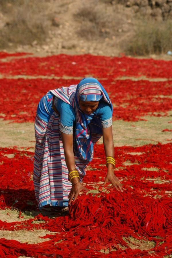 Agra , India                                                                                                                                                                                 Plus