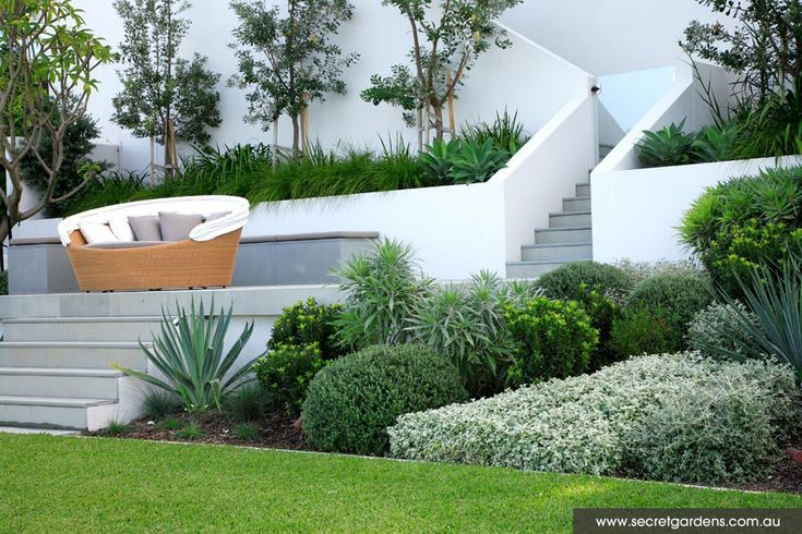 Waterfront Garden: Longueville, Sydney