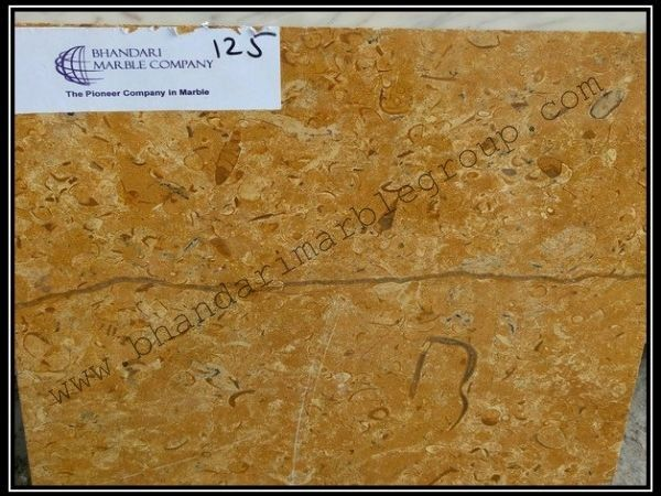 Bhandari marble group    (J Gold Fosil)We are showing you very good quality Indian Marble, Which is basically used in counter tops, table top, floor designs, wall cladding, kitchen top etc. We are showing you product with its Details and latest price.