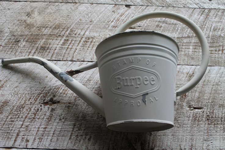 Vintage Burpee Seeds Watering Can-Metal Watering Can-Gardening Can-Farmhouse Decor-French Country by LittleMossyLane on Etsy