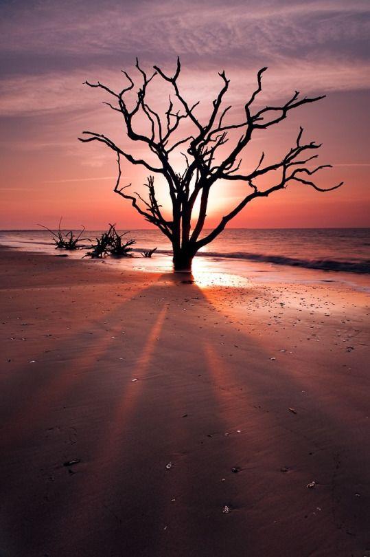 Shadowy Figure, Botany Bay, Edisto Island,SC (by Joseph Rossbach)