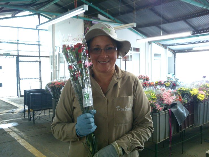 Guess what happens when you ask a flower worker about Florverde® certification on a flower!