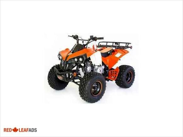 Introducing the brand new, mid/full size 2014 Rebel 125cc ATV NEW YEAR BLOW OUT SALE. Introducing the brand new, mid/full size Rebel 125cc ATV. Quad features a wide range of ...