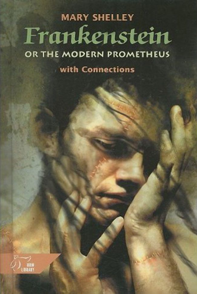 a summary of mary shelleys frankenstein Mary shelley's frankenstein – analysis hop over to the mary shelley's frankenstein – summary page which will fill you in context and analysis.