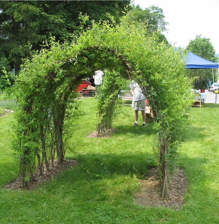 Arbor Living: 9 Best Willow Arch Images On Pinterest