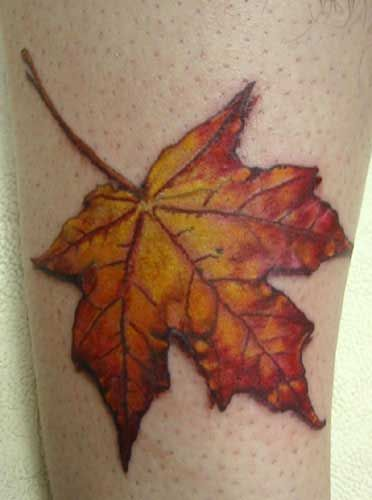 Google Image Result for http://www.galleryoftattoosnow.com/MilkMadeArtHOSTED/images/gallery/fall-leaf-tattoo-M.jpg