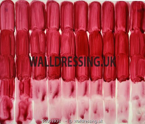 www.walldressing.co.uk, charlie cobb, artwork, clearance free, film, tv, abstract, painting, acrylic, pink, red