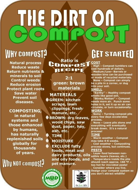 The Dirt on Compost  http://www.mudproject.org/page/composting-1