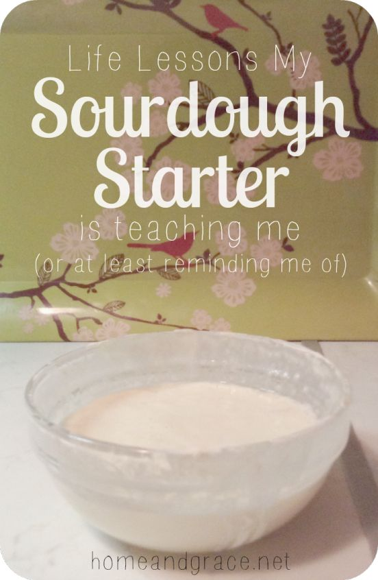 Life Lessons My Sourdough Starter is Teaching Me (or at least reminding me of).
