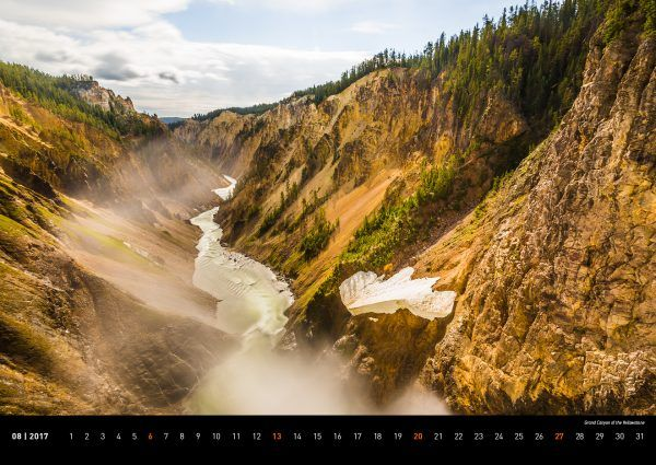 Yellowstone Nationalpark Grand Canyon of the Yellowstone  USA – Der Westen 2017 – Moose around the world