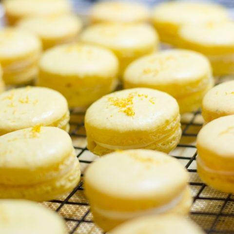 Meyer Lemon Macarons   sugar & snapshots