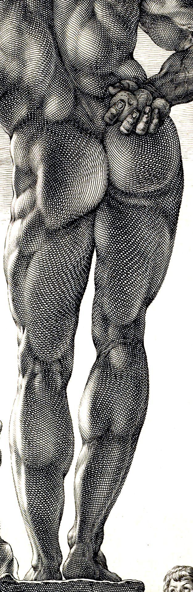 Farnese Hercules (detail), engraving, c. 1592 // by Hendrick Goltzius,  Metropolitan Museum of Art