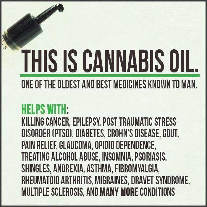 Image result for cannabis cures funny