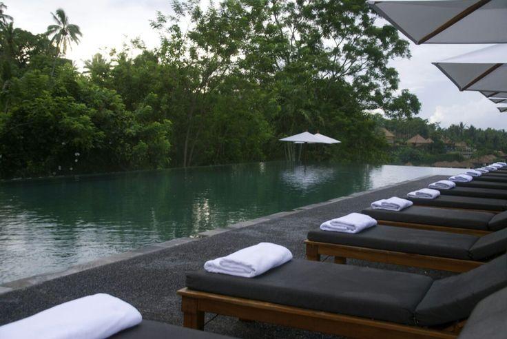 Infinity Pool at Alila Ubud