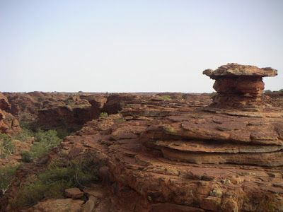 Adventure Travel Articles: Melbourne to Alice Springs tour - day visit to Kin...